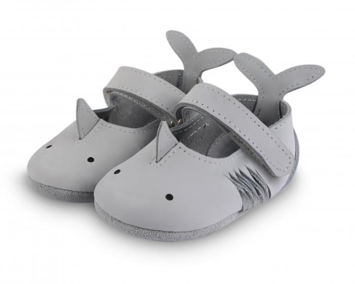 Amigu shark 1
