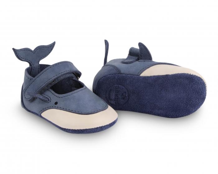 Amigu whale 3